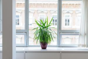 Viennaflat Apartments - 1010, Apartmány  Vídeň - big - 22