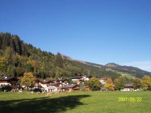 Ferienwohnung Kati, Apartmány  Saalbach Hinterglemm - big - 12