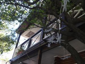 Гостевой дом Белка - фото 10