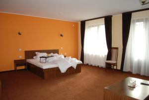 Vila Aris, Bed and Breakfasts  Iaşi - big - 16