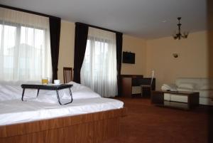Vila Aris, Bed and Breakfasts  Iaşi - big - 5