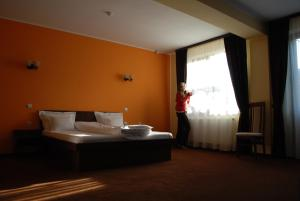Vila Aris, Bed and Breakfasts  Iaşi - big - 9