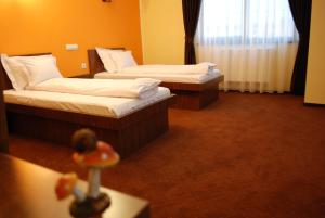 Vila Aris, Bed and Breakfasts  Iaşi - big - 4