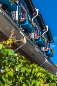 Отель Бронзовый кабан - фото 14