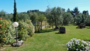 Agriturismo Podere Sottogello, Bauernhöfe  San Giovanni a Corazzano  - big - 30