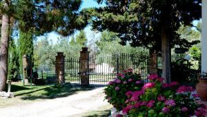 Agriturismo Podere Sottogello, Bauernhöfe  San Giovanni a Corazzano  - big - 20