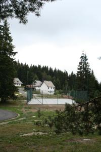 Studios Šumska Kuća 2 & 3, Apartments  Kopaonik - big - 52