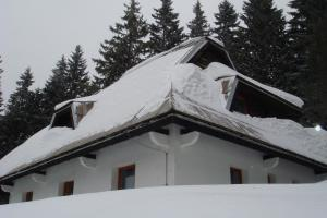 Studios Šumska Kuća 2 & 3, Apartments  Kopaonik - big - 29