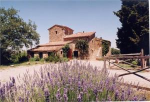 Villa Fitto