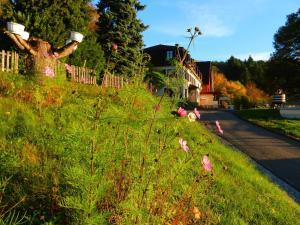 Maison du Kleebach, Prázdninové areály  Munster - big - 26