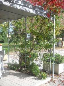 Al Casolare, Hotely  Corinaldo - big - 17