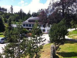 Hotel Sarbacher, Hotel  Gernsbach - big - 19