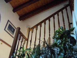 Agriturismo Sant' Anna, Фермерские дома  Тревизо - big - 21