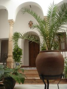 Casa Maika