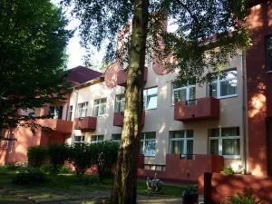 Отель Старый дуб - фото 13