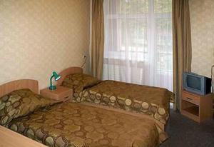 Отель Старый дуб - фото 16