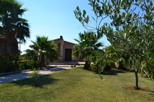 B&B La Collina Di Tropea, Bed & Breakfast  Brattirò - big - 12