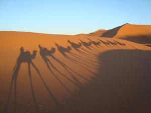 Marhaba Camp, Camel & Sandboarding, Zelt-Lodges  Merzouga - big - 86