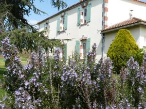Chambres d'hôtes Le Cartounier, Bed and breakfasts  Pinel-Hauterive - big - 23