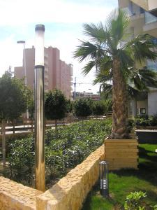 Cala Alta, Apartments  Cala de Finestrat - big - 75