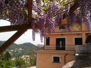 Nearby hotel : Casa Fasano Country House
