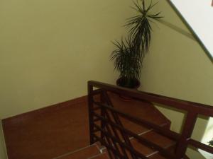 Guest House Almira, Affittacamere  Loo - big - 22