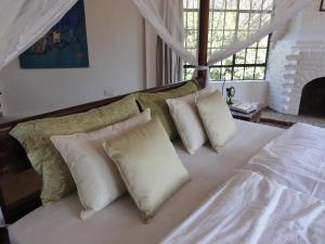 Meru House Lekisilai, Penzióny  Arusha - big - 10