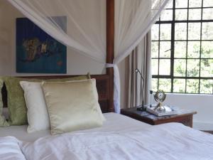 Meru House Lekisilai, Penzióny  Arusha - big - 42