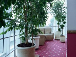 Отель Мирит - фото 21