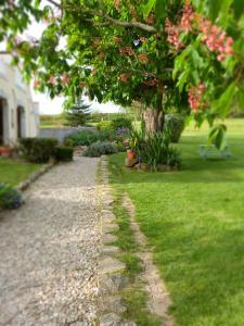 Chambres d'hôtes Le Cartounier, Bed & Breakfast  Pinel-Hauterive - big - 19