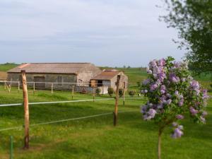 Chambres d'hôtes Le Cartounier, Bed & Breakfast  Pinel-Hauterive - big - 34
