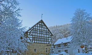 Waldhotel im Wiesengrund, Hotels  Hürtgenwald - big - 21