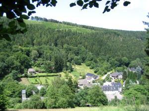 Waldhotel im Wiesengrund, Hotels  Hürtgenwald - big - 28