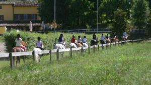 Tenuta Le Sorgive Agriturismo, Bauernhöfe  Solferino - big - 61
