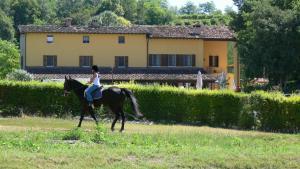 Tenuta Le Sorgive Agriturismo, Bauernhöfe  Solferino - big - 58