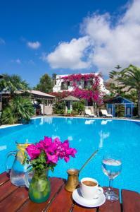 Holiday Beach Resort(Perivolos)