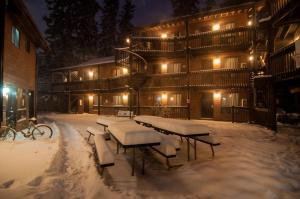 Banff International Hostel - Accommodation - Banff
