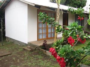 Korina's Guesthouse, Affittacamere  Hanga Roa - big - 32