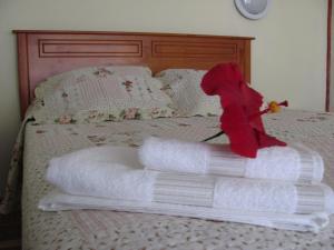 Korina's Guesthouse, Affittacamere  Hanga Roa - big - 51