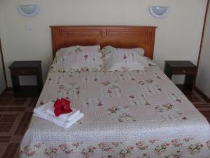Korina's Guesthouse, Affittacamere  Hanga Roa - big - 5