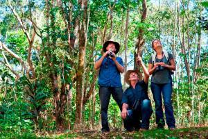 Rose Gums Wilderness Retreat, Лоджи  Butchers Creek - big - 34