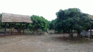 Baan Thanatchanok, Magánszállások  Csiangdau - big - 17