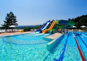 Курортный отель Rixos-Prykarpattya Resort - фото 4