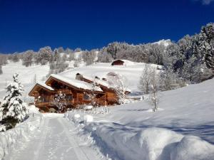 Chalet La Vigogne et Spa, Шале  Ле-Гран-Борнан - big - 19
