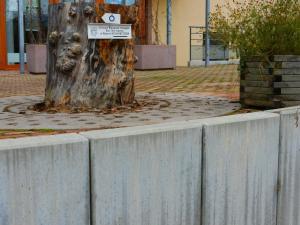 Maison du Kleebach, Prázdninové areály  Munster - big - 42