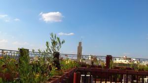 Ryad Bab Berdaine, Riads  Meknès - big - 102