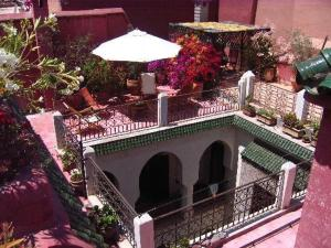 Nadir Home