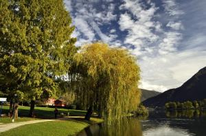 B&B Viavai, Bed & Breakfast  Spinone Al Lago - big - 29