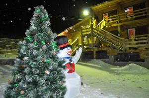 Гостевой дом Байкальские просторы - фото 26