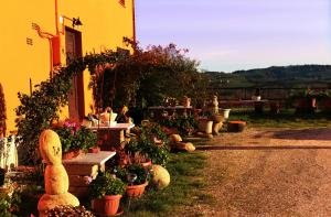 Nearby hotel : B&B Aesis La Dolce Collina